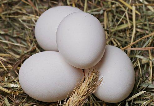 Приготовить майонез с добавлением яиц