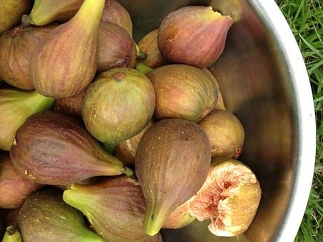 лечебные свойства сушеного инжира
