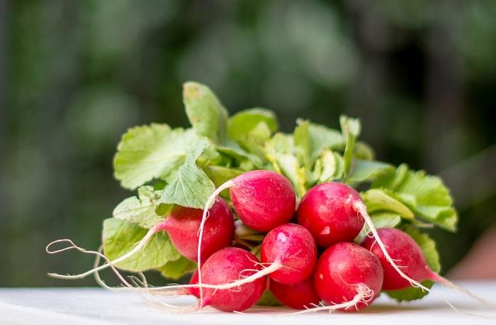 6 самых полезных продуктов весной для здоровья