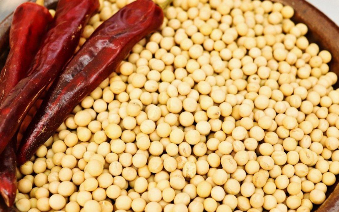 Ферментированная соя, преимущества и недостатки