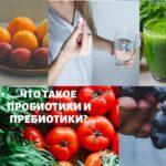 Пробиотики и пребиотки